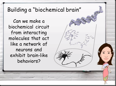 dna.biochemical.brain